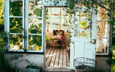 Turn an old shed into a vintage greenhouse